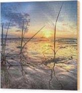 Low Tide In Crystal Beach Wood Print