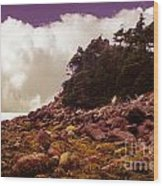 Low Tide Shoreline Closeup With Clouds Wood Print