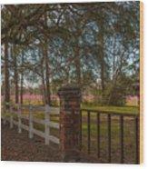 Lowcountry Gates To Boone Hall Plantation Wood Print