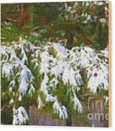 Lowcountry Snow Wood Print