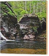 Lower Adams Falls Wood Print