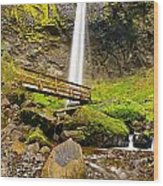 Lower Angle Of Elowah Falls In The Columbia River Gorge Of Oregon Wood Print