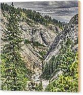 Lower Bear 2 Wood Print