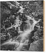 Lower Bridal Veil Falls 2 Bw Wood Print