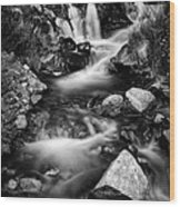 Lower Bridal Veil Falls 3 Bw Wood Print