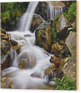 Lower Bridal Veil Falls 4 Wood Print
