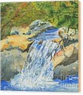 Lower Burch Creek Wood Print