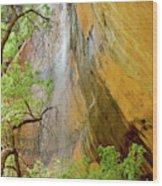 Lower Emerald Pool Waterfall Red Rock Wood Print