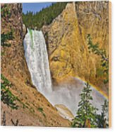 Lower Falls From Uncle Toms Trail Wood Print