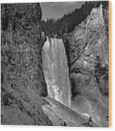 Lower Falls In Yellowstone In Black And White Wood Print