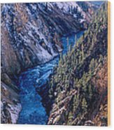 Lower Falls Into Yellowstone River Wood Print