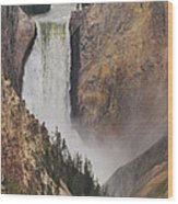 Lower Falls - Yellowstone Wood Print
