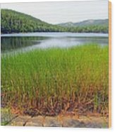 Lower Hadlock Pond Wood Print