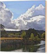 Lower Lake  Wood Print