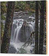 Lower Lewis Falls 3 Wood Print