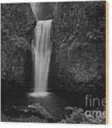 Lower Multnomah Falls Wood Print