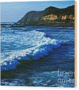 Lower Oregon Coast 2m Wood Print