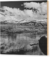 Lower Owens River Wood Print
