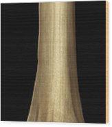 Lower Part Of The Femur Bone Wood Print