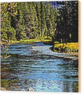 Lower Truckee River Wood Print
