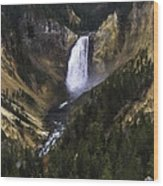 Lower Yellowstone Falls Fall Wood Print
