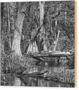 Loxahatchee Black And White Wood Print