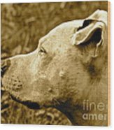 Loyalty And Strength Wood Print by Q's House of Art ArtandFinePhotography