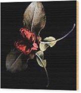Lr 002 Wood Print