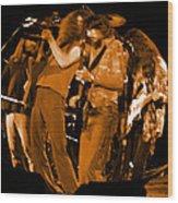 Ls Spo #68 Enhanced In Amber Fisheye Wood Print