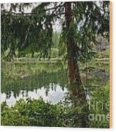 Lush Green At Starvation Lake Wood Print