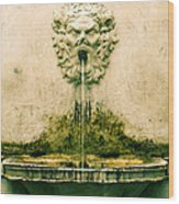 Lucca Fountain Wood Print