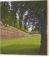Lucca Walls Wood Print