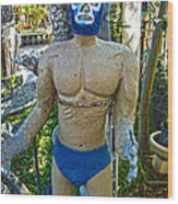 Luche Libre - 01 Wood Print by Gregory Dyer