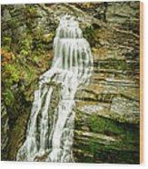 Lucifer Falls Treman Park Wood Print