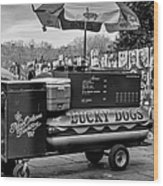 Lucky Dogs In Jackson Square Nola Bw Wood Print