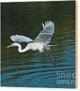 Lucky Egret Wood Print
