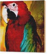 Lucky Look Bird Wood Print