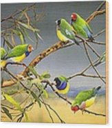 Lucky Seven - Gouldian Finches Wood Print