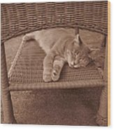 Lucy Dreams Wood Print