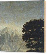 Ludlow Castle, Shropshire Wood Print