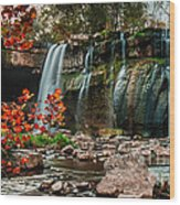Ludlowville Falls Wood Print