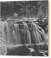 Ludlowville Falls In Winter I Wood Print