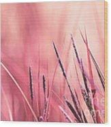 Luminis - S09c - Pink Wood Print