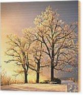 Luminous - Blue Ridge Winter Sunset Wood Print