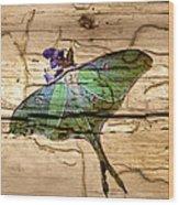 Luna Moth Worm Wood  Wood Print