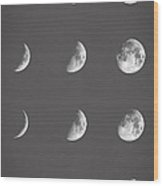 Lunar Phases Wood Print