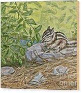 Lunch Ala Rock Wood Print
