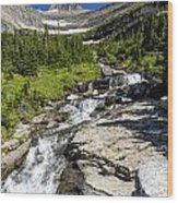 Lunch Creek Wood Print