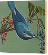 Lunch Time For Blue Bird Wood Print