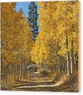Lundy Canyon Wood Print
